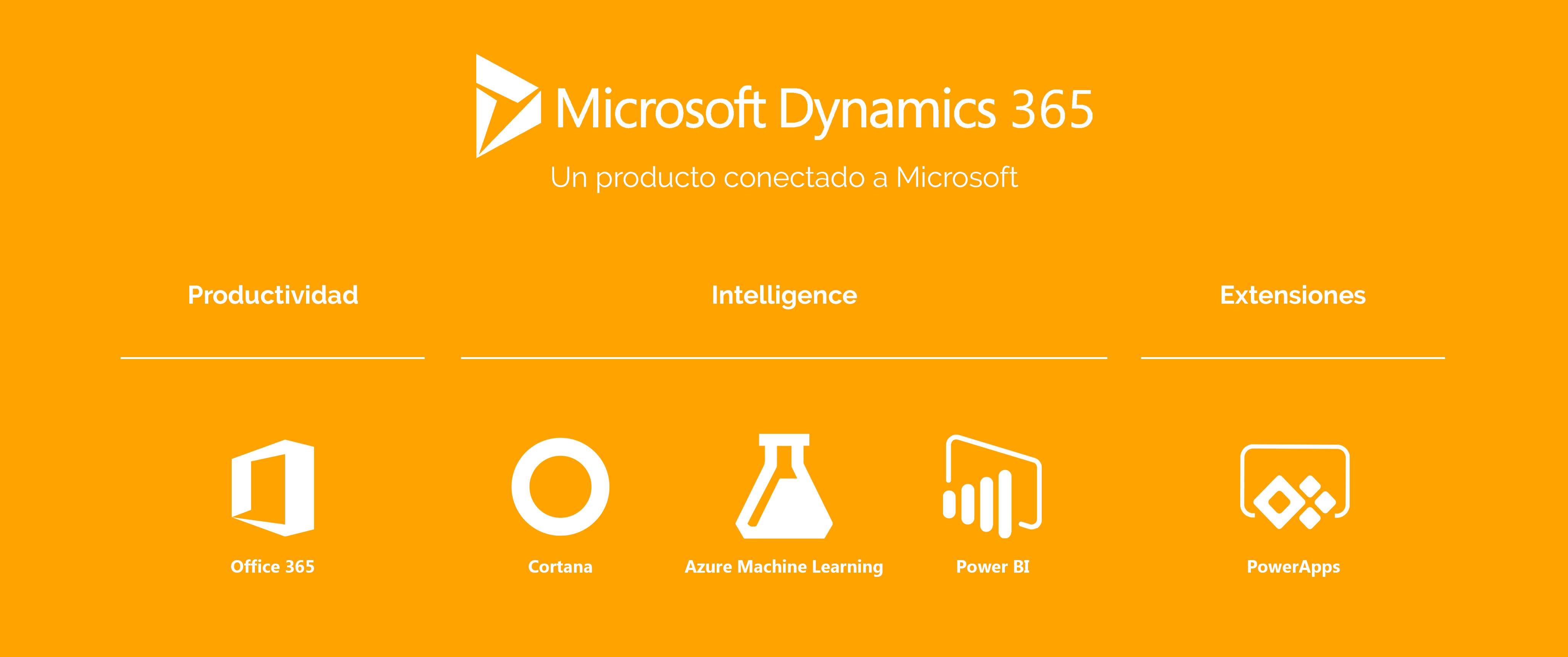 DQSconsulting-Dynamics365-ERP-11