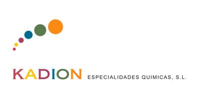 dqsconsulting-experiencias-kadion
